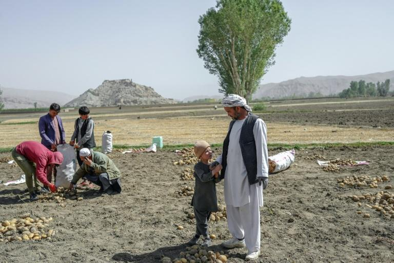 Hazaras make up as much as a fifth of Afghanistan's population (AFP/BULENT KILIC)