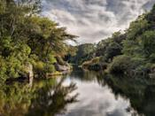 <p>It's not all beaches. Stony Brook Mill Pond in Brewster is serene spot surrounded by lush greenery.</p>