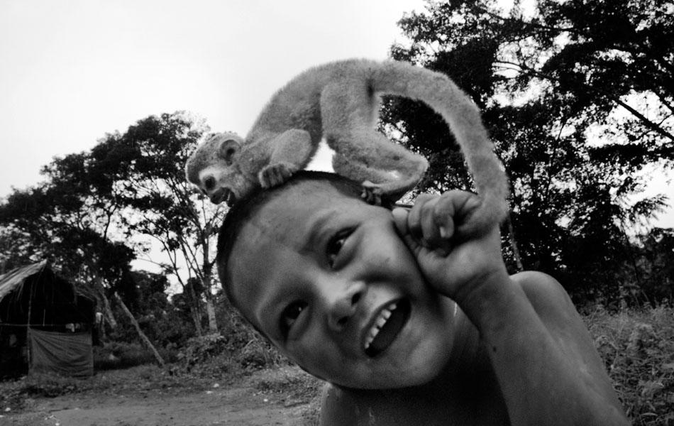 A Nukak boy plays with a baby monkey in a refugee camp close to San Jose del Guaviare on September 04, 2009 in San Jose del Guaviare, Colombia. The Nukak Maku people, nomadic hunter-gatherers from Amazonia, were violently driven out of the jungle by the Colombian guerilla and paramilitary squads. Now, they roughly cut off their original tribal lifestyle and they are stuck between worlds. They learn from the (mainly Christian) aid workers to use clothes, to listen to the radio, to beg for money. Although their digestion suffer, they love to eat sweets, cookies and other western food. They have hunted out all the animals around and now there is nothing left for them. Nukak can not return to the jungle, their world has already passed through an irreversible change. (Photo by Jan Sochor/LatinContent/Getty Images)