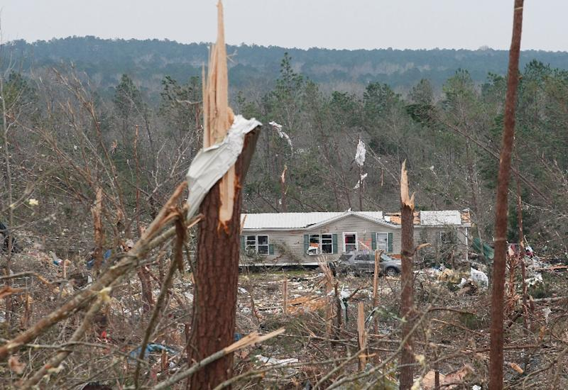 Trees snapped in half by the deadly double tornado that swept through Alabama, leaving a trail of devastation in its wake (AFP Photo/Tami Chappell)