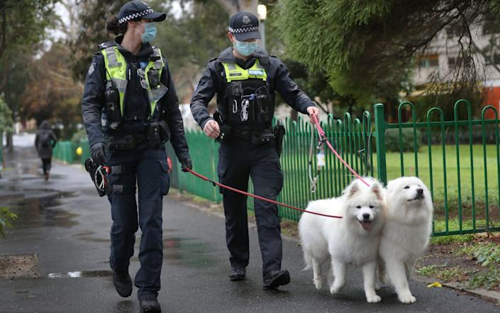 Police walk dogs belonging to residents of the Alfred Street public housing tower which remains under tight lockdown in Melbourne, Australia - Shutterstock