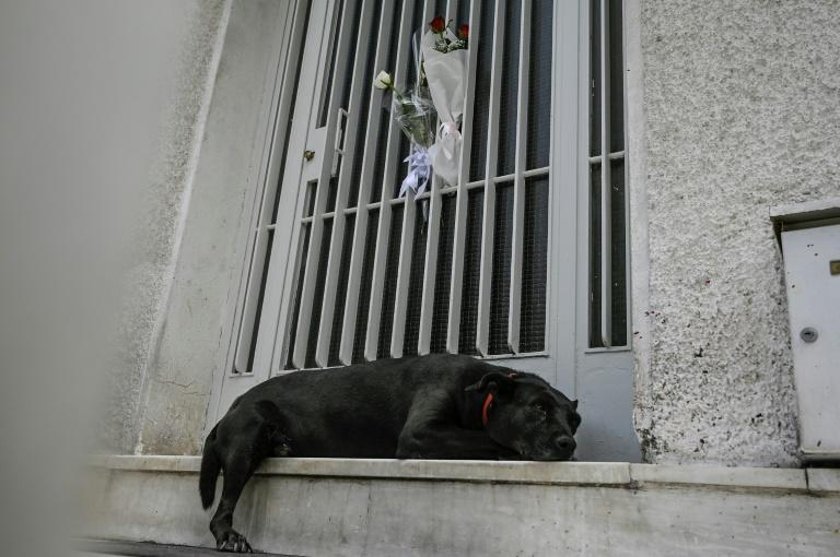 The Theodorakis' familly dog lies outside the legendary composer's home after his death (AFP/Louisa GOULIAMAKI)