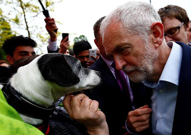 <p>Jeremy Corbyn, the leader of Britain's opposition Labour Party, poses with a dog named Scrappy-doo, 14 years old, as he campaigns in Southall, London, Britain May 18, 2017. (Photo: Neil Hall/Reuters) </p>