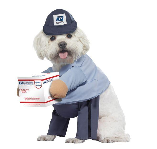"Get this <a href=""https://fave.co/3iYNVHW"" target=""_blank"" rel=""noopener noreferrer"">U.S. Mail Carrier Dog Costume for $18</a> at USPS. It's available in sizes medium and large, and the box is attached via Velcro."