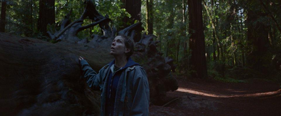 Frances McDormand as Fern in the forest in Nomadland