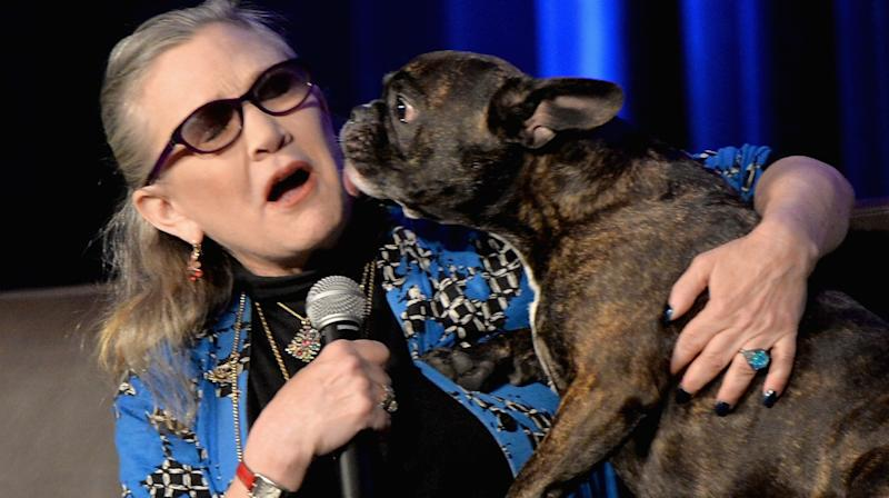 Carrie Fisher's BFF Dog Has A Perfectly Adorable Cameo In 'Star Wars: The Last Jedi'