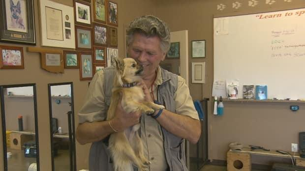 Bill Grimmer has trained Foxy, a long-haired Chihuahua to detect cortisol.  (Pierre Fournier/CBC - image credit)