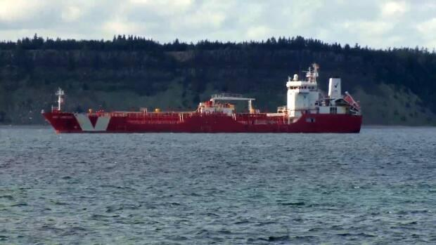 The Iver Ambition, pictured here, has Newfoundland and Labrador, taking 14 COVID-19 cases with it.  (Curtis Hicks/CBC - image credit)