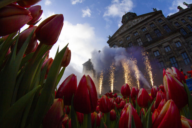 Fireworks are set off as scores of people wait pick free tulips on Dam Square in front of the Royal Palace in Amsterdam, Netherlands, Saturday, Jan. 18, 2020, on national tulip day which marks the opening of the 2020 tulip season. (AP Photo/Peter Dejong)