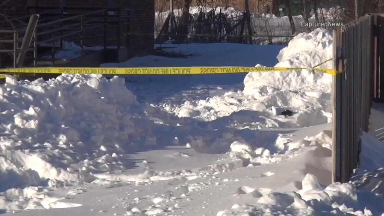 A 12-year-old girl died Sunday after a snow fort collapsed on her in Arlington Heights, police said.