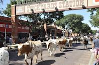 """<p><strong>Fort Worth Stockyards</strong></p><p>You know you entered the south when you can catch the world's only (twice daily) <a href=""""https://www.fortworthstockyards.org/"""" rel=""""nofollow noopener"""" target=""""_blank"""" data-ylk=""""slk:cattle drive"""" class=""""link rapid-noclick-resp"""">cattle drive</a> where the <a href=""""https://www.fortworth.com/the-herd/"""" rel=""""nofollow noopener"""" target=""""_blank"""" data-ylk=""""slk:Fort Worth Herd"""" class=""""link rapid-noclick-resp"""">Fort Worth Herd</a> (real Texas cowhands) drives Texas longhorns down East Exchange Avenue. Be sure to stop into family-owned <a href=""""http://www.leddys.com/index.html"""" rel=""""nofollow noopener"""" target=""""_blank"""" data-ylk=""""slk:M.L. Leddy's"""" class=""""link rapid-noclick-resp"""">M.L. Leddy's</a>, a Fort Worth staple since 1922, for custom hand-made cowboy boots, hats and belts.</p>"""
