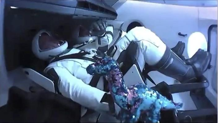 "Astronaut Bob Behnken pushes aside a plush dinosaur toy floating around the cabin of the Crew Dragon as it reaches low-Earth orbit, May 30, 2020. <p class=""copyright"">NASA TV</p>"