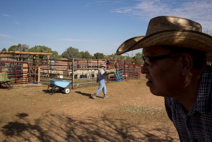 Michael Bigman and his wife, Margorie Bigman, feed the lambs on Sept. 6, 2019, in Coppermine, Arizona.