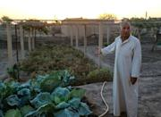Syrian farmer Dakhil Mohammed says 'farming has become a loss-making business' and warns his family is already selling their women's gold and furnishings to buy seeds for next year (AFP/Delil SOULEIMAN)