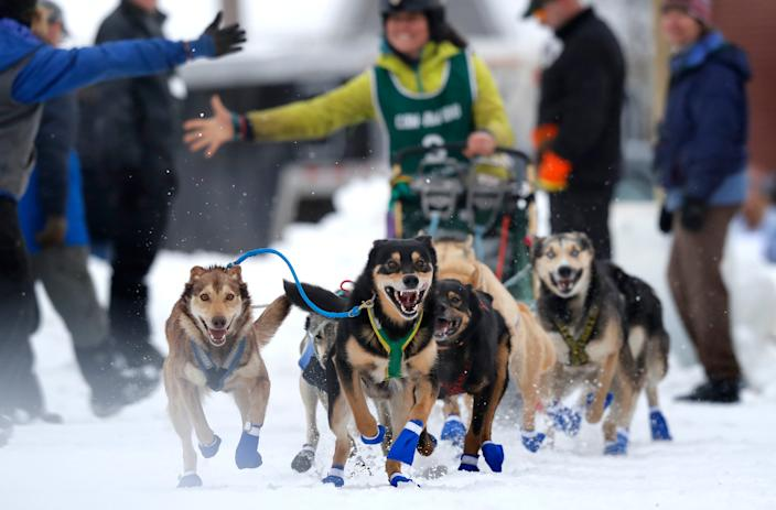 Sally Manikian, of Shelburne, N.H., gets a high five as her Alaskan huskies charge from the start of the Irving Woodlands Can-Am Crown sled dog race in 2018 in Fort Kent, Maine.