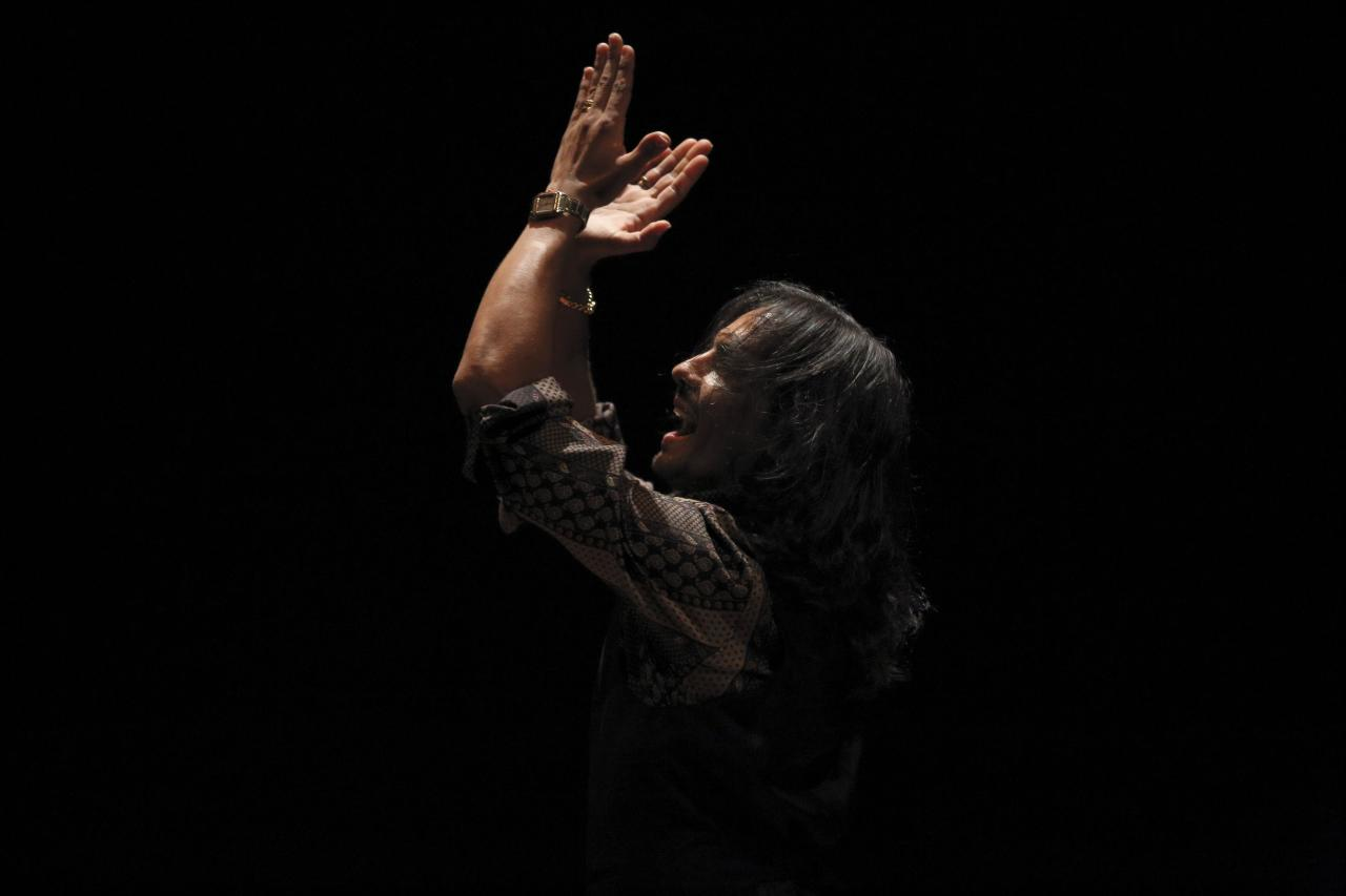 """Spanish flamenco dancer Farruquito performs during a rehearsal of his show """"Pinacenda"""" at the Biennial of Flamenco, in the Andalusian capital of Seville September 15, 2014. The biennial will run until October 5. REUTERS/Marcelo del Pozo (SPAIN - Tags: ENTERTAINMENT SOCIETY TPX IMAGES OF THE DAY)"""