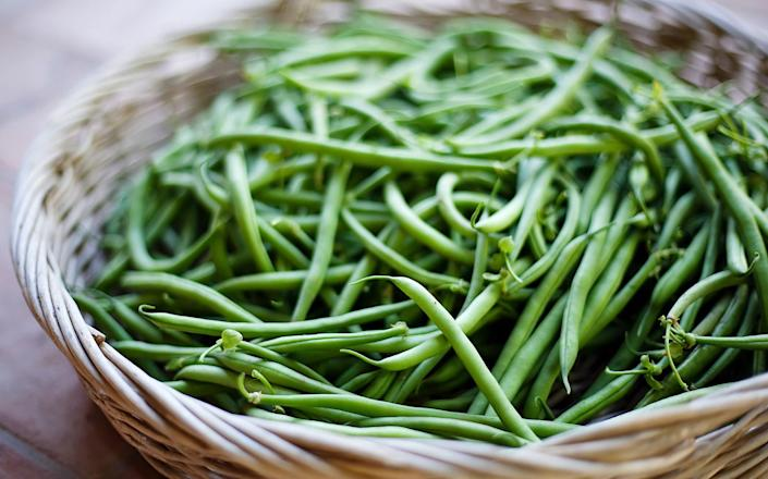 A wide basket filled with fresh green beans