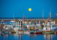 <p>A full moon shines over Provincetown, MA // July 31, 2015</p>