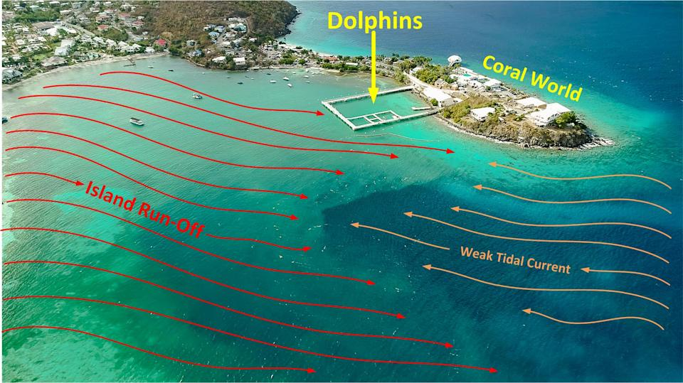 A drone image of Coral World and the surrounding waters. Red lines on the left indicate island runoff and yellow lines to the right show the weak tidal current.