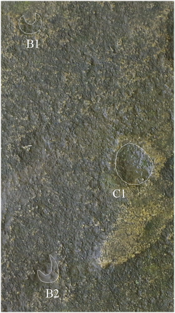 """Some of the wells in the Rostov slab don't correspond to solar movements. Instead, they track the motion of the moon. Crescent-shaped B1 and B2 represent the positions of the moonrise of the so-called """"high moon,"""" a point in the lunar cycle whe"""