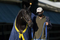 Kentucky Derby winner Medina Spirit is walked to be groomed after a morning exercise at Pimlico Race Course ahead of the Preakness Stakes horse race, Tuesday, May 11, 2021, in Baltimore. (AP Photo/Julio Cortez)