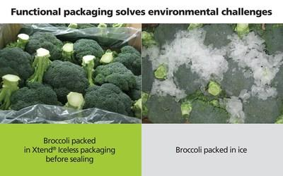 StePac: Taking broccoli packaging out of the ice age
