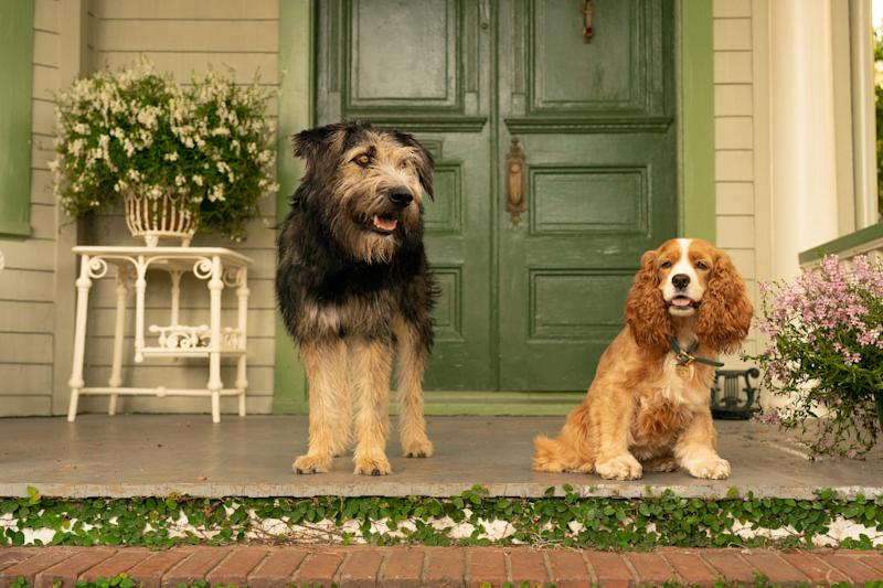 "Streetwise mutt Tramp (voiced by Justin Theroux) shows sheltered cocker spaniel Lady (Tessa Thompson) an epic adventure in the new Disney+ film ""Lady and the Tramp."""
