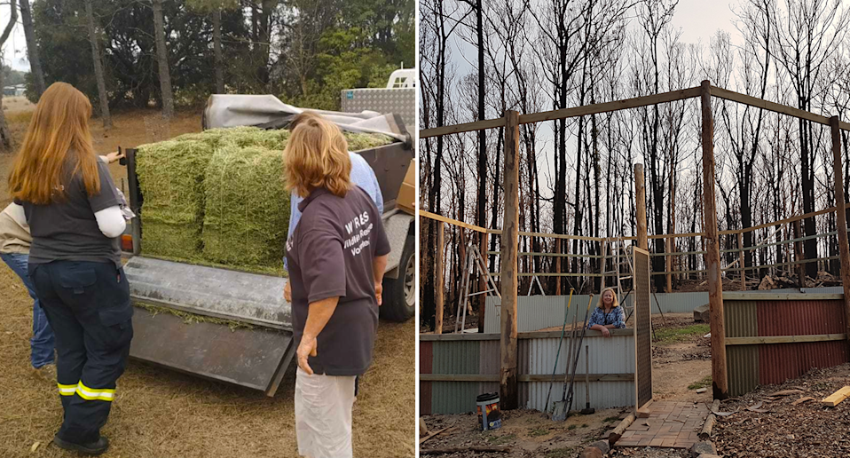Split screen. Left - three carers stand around the back of a ute with hay in it. Right - a woman stands inside a half built enclosure. There are burnt trees in the background.