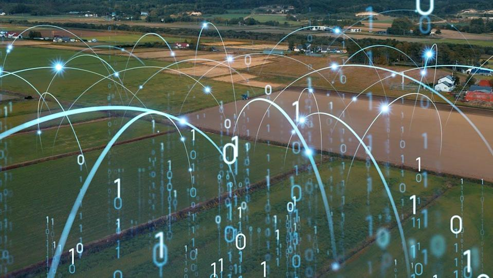 """<span class=""""caption"""">Technological advances can help manage more efficient, sustainable and accountable farming practices.</span> <span class=""""attribution""""><span class=""""source"""">(Shutterstock)</span></span>"""