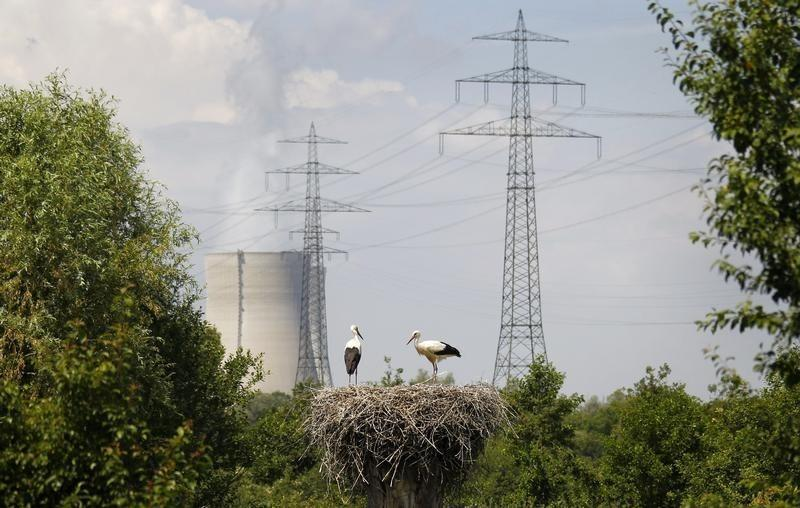 Two storks stand in their nest near cooling towers of EnBW nuclear power plant in Phillipsburg