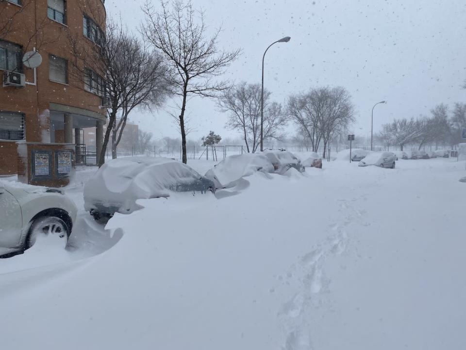 PHOTOS: Madrid, Spain blasted by historic snowfall, biggest in decades