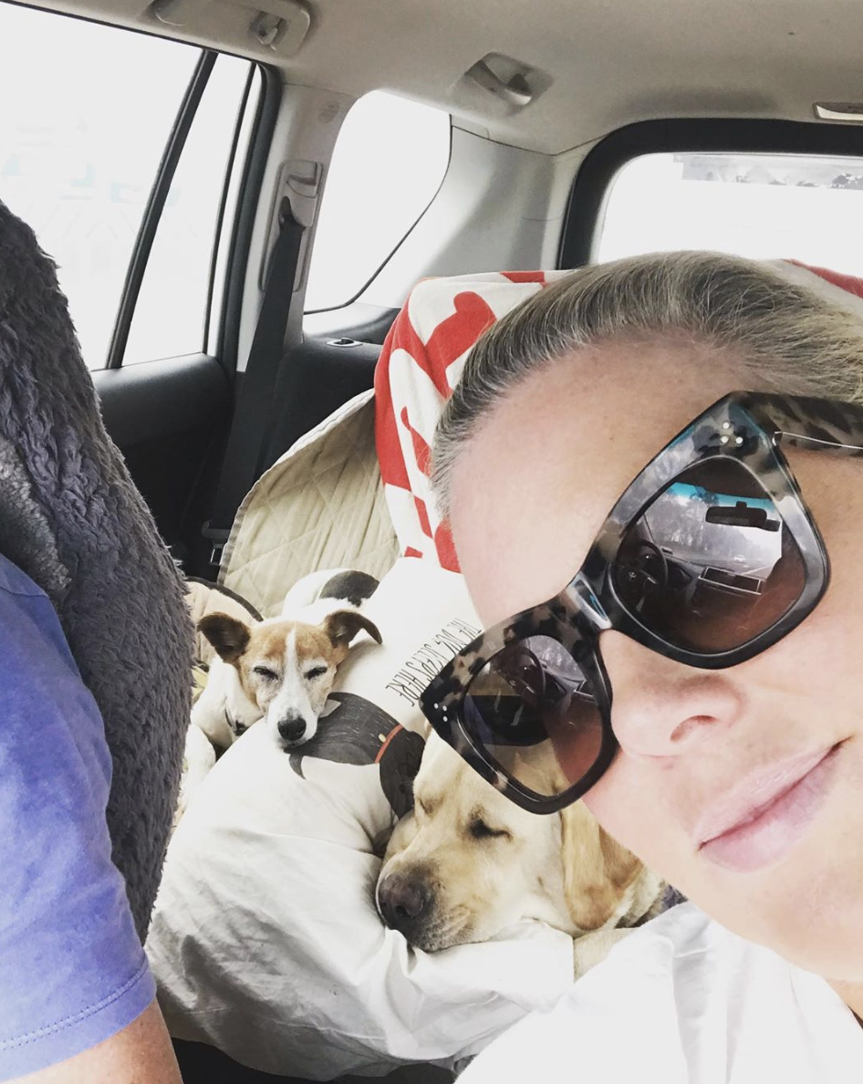 A photo of Sunrise star Sam Armytage in a car with her dog driving away from the NSW bushfires.