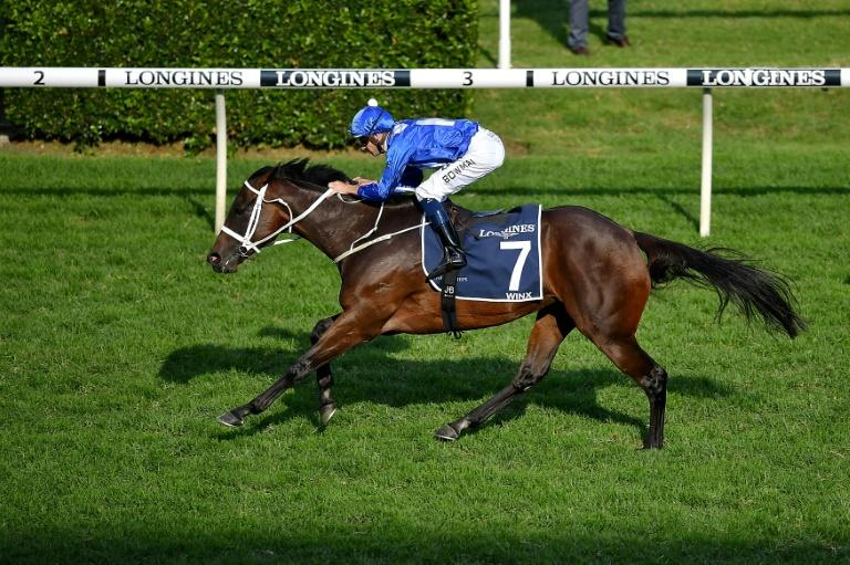 Champion mare Winx loses first foal weeks before expected birth