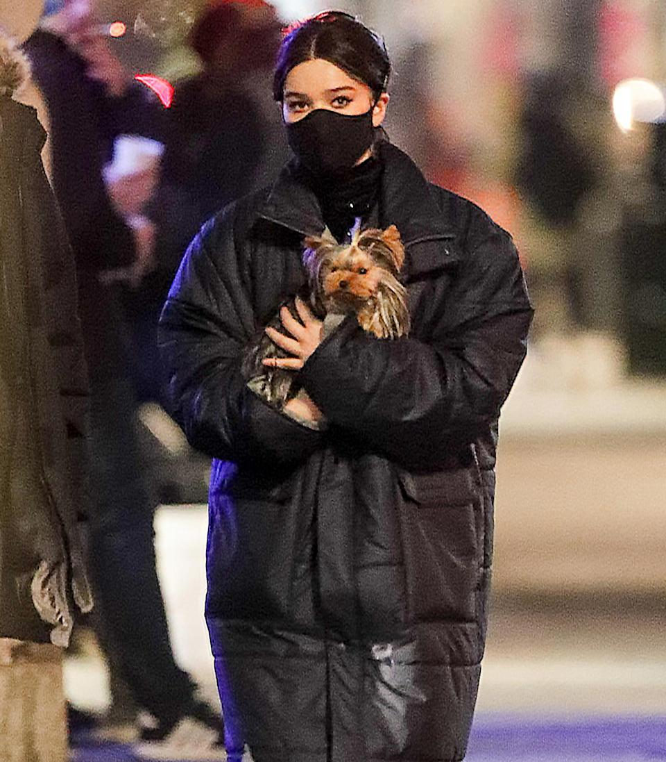 <p>Hailee Steinfeld cradles a teeny pooch on Thursday while shooting scenes for <em>Hawkeye</em> in New York City.</p>