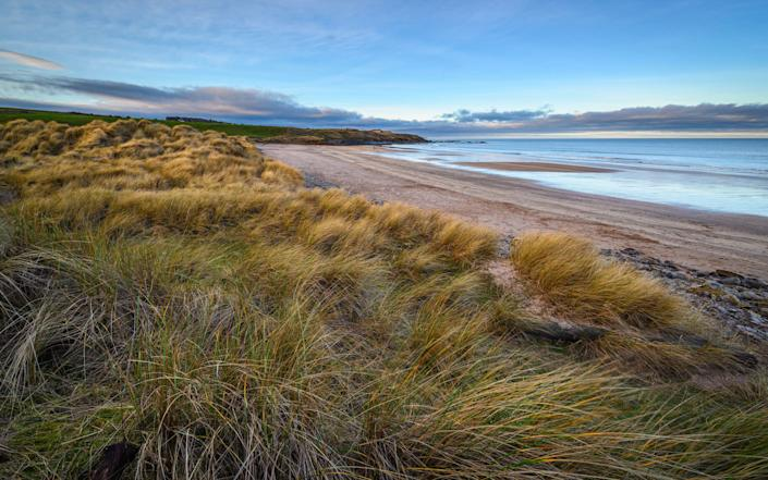 Cocklawburn is a great place for sandcastle builders, shell seekers and fossil hunters - ISTOCK