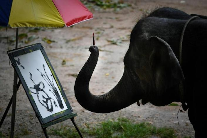 Suda the elephant holds a brush in her trunk and paints Japanese-style landscapes for visitors who can later buy the prints for up to $150 (AFP Photo/Lillian SUWANRUMPHA)