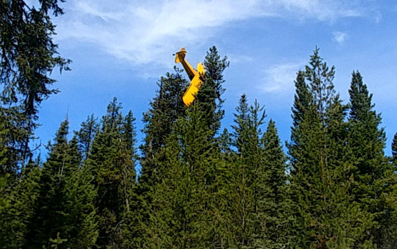 This undated photo provided by the Valley County Sheriff's Office shows a small plane where it came to rest at the top of a tree near the resort town of McCall, Idaho. Pilot John Gregory was not hurt in the crash Monday night, April 22, 2019, which happened when his single-engine Piper Cub PA-18 lost power and a wing strut became entangled in the the top of a 60-foot (18-meter) tree as he was trying to crash-land in a field, officials said. Gregory was rescued from his perch atop the giant white fir by volunteer firefighter Randy Acker, who owns a tree-removal company. (Undersheriff Jason Speer/Valley County Sheriff's Office via AP)