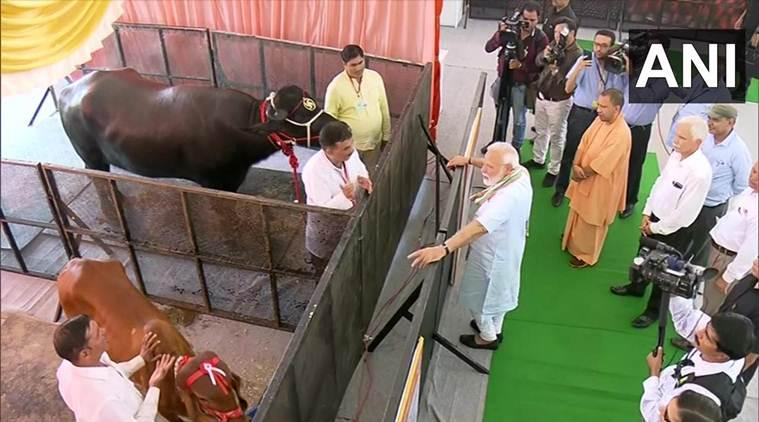 Some people think 'Om' and 'cow' will take country back to 16th century: PM Modi