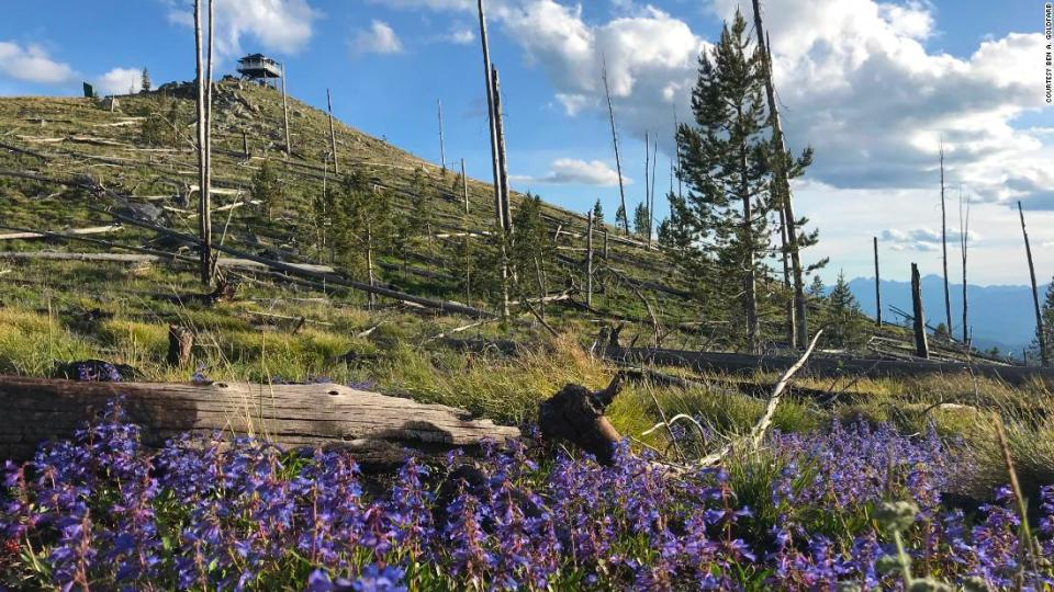 """<p>Near the Gird Point lookout in Bitteroot National Forest in Darby, Montana, there's plenty to marvel at.</p><div class=""""cnn--image__credit""""><em><small>Credit: Courtesy Ben A. Goldfarb / CNN</small></em></div>"""