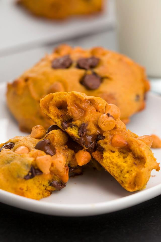 "<p>Because pumpkin loves chocolate-but it loves butterscotch even more.</p><p>Get the recipe from <a rel=""nofollow"" href=""https://www.delish.com/cooking/recipes/a44396/pumpkin-chocolate-butterscotch-chip-cookies/?visibilityoverride"">Delish</a>.</p>"