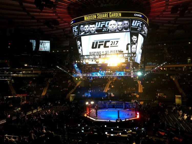 georges st pierre 39 s return drives ufc 217 to massive gate