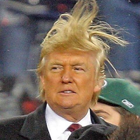 "That time when Trump's hair yelled ""SCATTER!"" in an attempt to pull a fast one."
