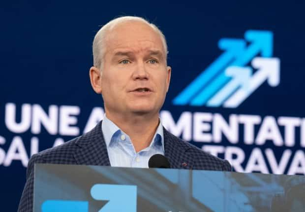 Conservative Leader Erin O'Toole edited his party's election platform Monday, saying that while he will repeal an order-in-council banning 1,500 firearms, those firearms would remain banned during a review of the firearm classification system.  (Frank Gunn/The Canadian Press - image credit)