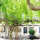 """<p><a href=""""https://www.the-albion.co.uk/"""" rel=""""nofollow noopener"""" target=""""_blank"""" data-ylk=""""slk:The Albion"""" class=""""link rapid-noclick-resp"""">The Albion</a>'s garden is an ideal location for a cold beer if you find yourself in London's Islington. Expect lots of wisteria, fairy lights and bunting.</p><p><a href=""""https://www.instagram.com/p/CMX-W6snFyG/?utm_source=ig_embed&utm_campaign=loading"""" rel=""""nofollow noopener"""" target=""""_blank"""" data-ylk=""""slk:See the original post on Instagram"""" class=""""link rapid-noclick-resp"""">See the original post on Instagram</a></p>"""