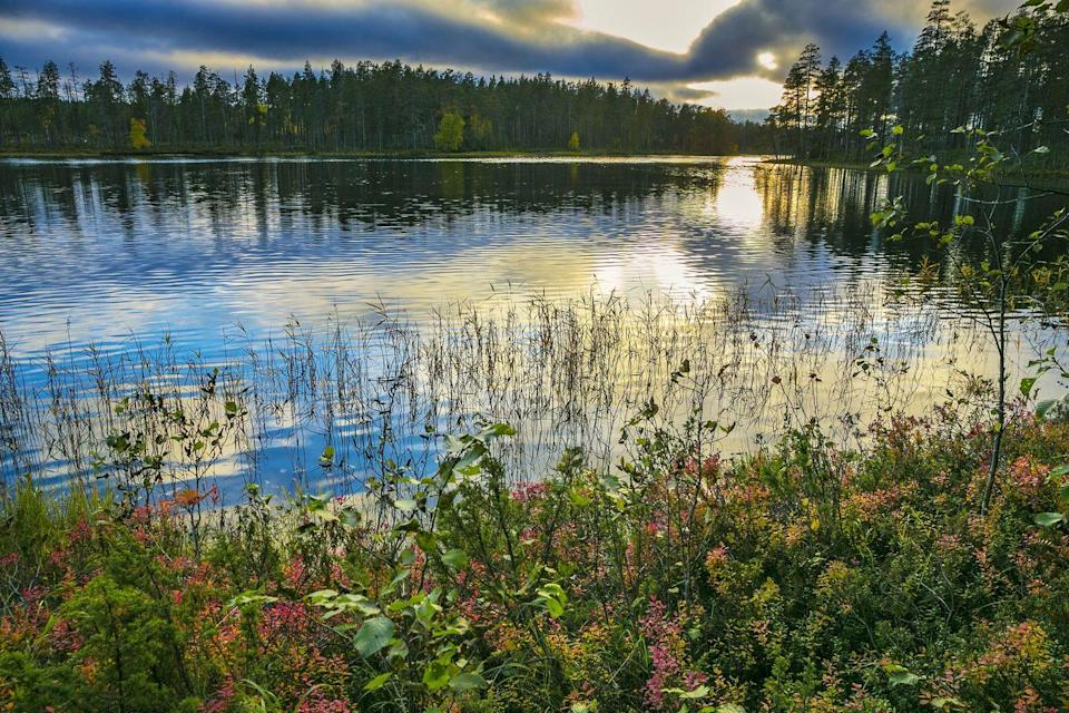 """<p><a href=""""https://www.nationalparks.fi/en/hossa"""" rel=""""nofollow noopener"""" target=""""_blank"""" data-ylk=""""slk:Hossa National Park"""" class=""""link rapid-noclick-resp"""">Hossa National Park</a> is known as a legend in Finland for its raw natural beauty, making it a perfect campsite. The park is known for its incredibly clear and bright lakes and waters, which look almost too blue to be real. The waters and the rock paintings of Julma-Ölkky and Värikallio, which date back thousands of years, are some of the best things about this spot. <br></p>"""