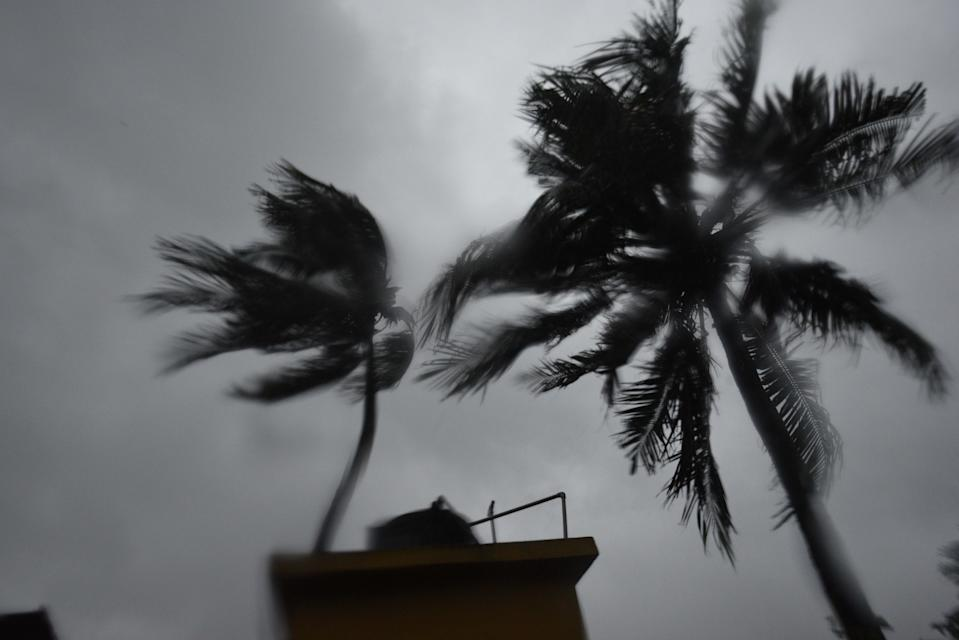 KOLKATA, INDIA - MAY 20: Trees sway under an overcast sky after Cyclone Amphan hit the city with heavy rain and wind during the afternoon on May 20, 2020 in Kolkata, India. Super Cyclone Amphan made landfall at 2.30 pm. Over five lakh people have been evacuated in West Bengal while over 1.58 lakh have been taken to safety in Odisha. (Photo by Samir Jana/Hindustan Times via Getty Images)