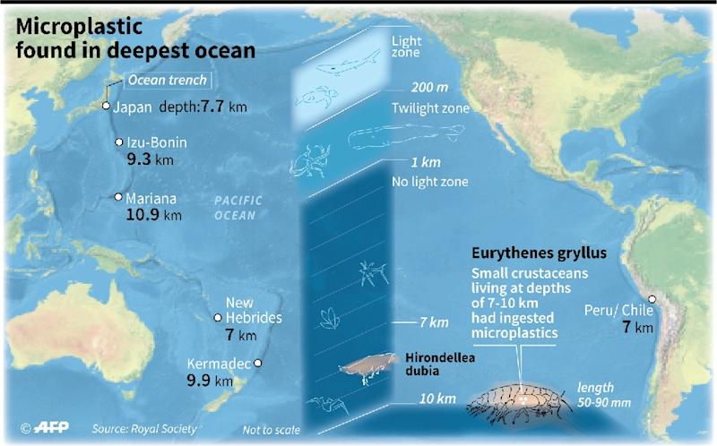 Map showing ocean trenches up to 10 kilometres (six miles) deep where scientistsfound tiny shrimps that had ingested microplastics (AFP Photo/Jonathan WALTER)