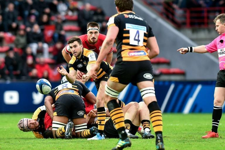 New deal - Wasps coach Lee Blackett has extended his contract