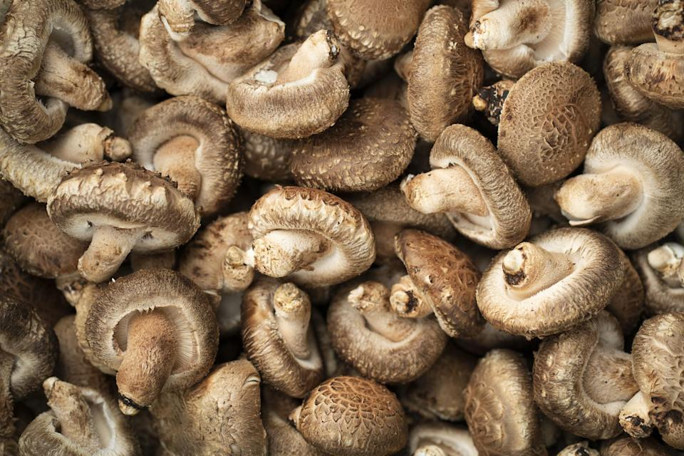 a bunch of mushrooms