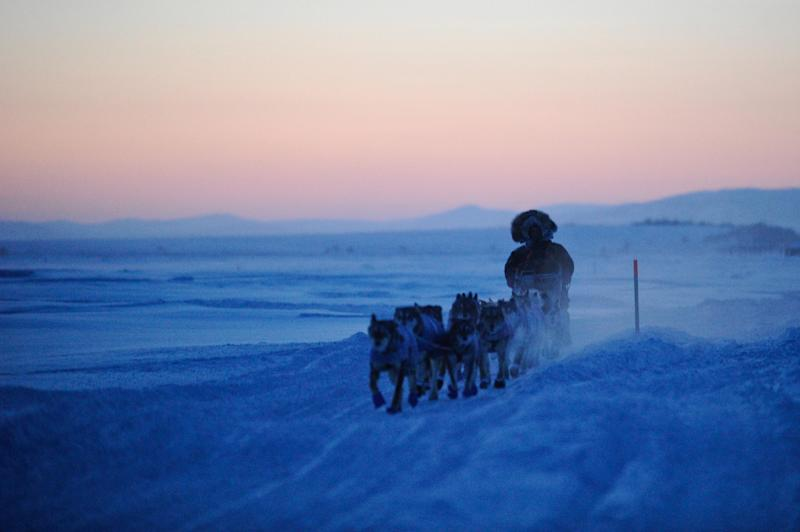 Aaron Burmeister approaches Unalakleet, Alaska, during the Iditarod Trail Sled Dog Race on Sunday, March 11, 2012. (AP Photo/Anchorage Daily News, Marc Lester)